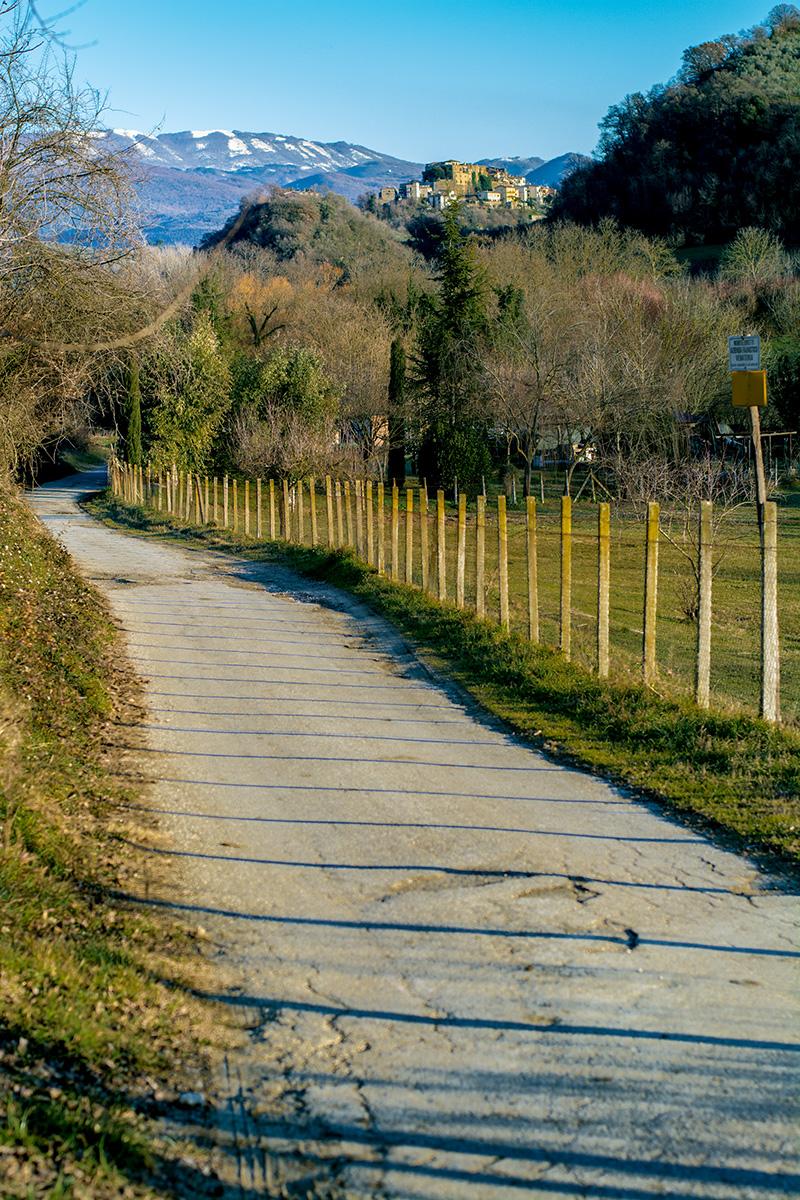 Monteliberetti countryside