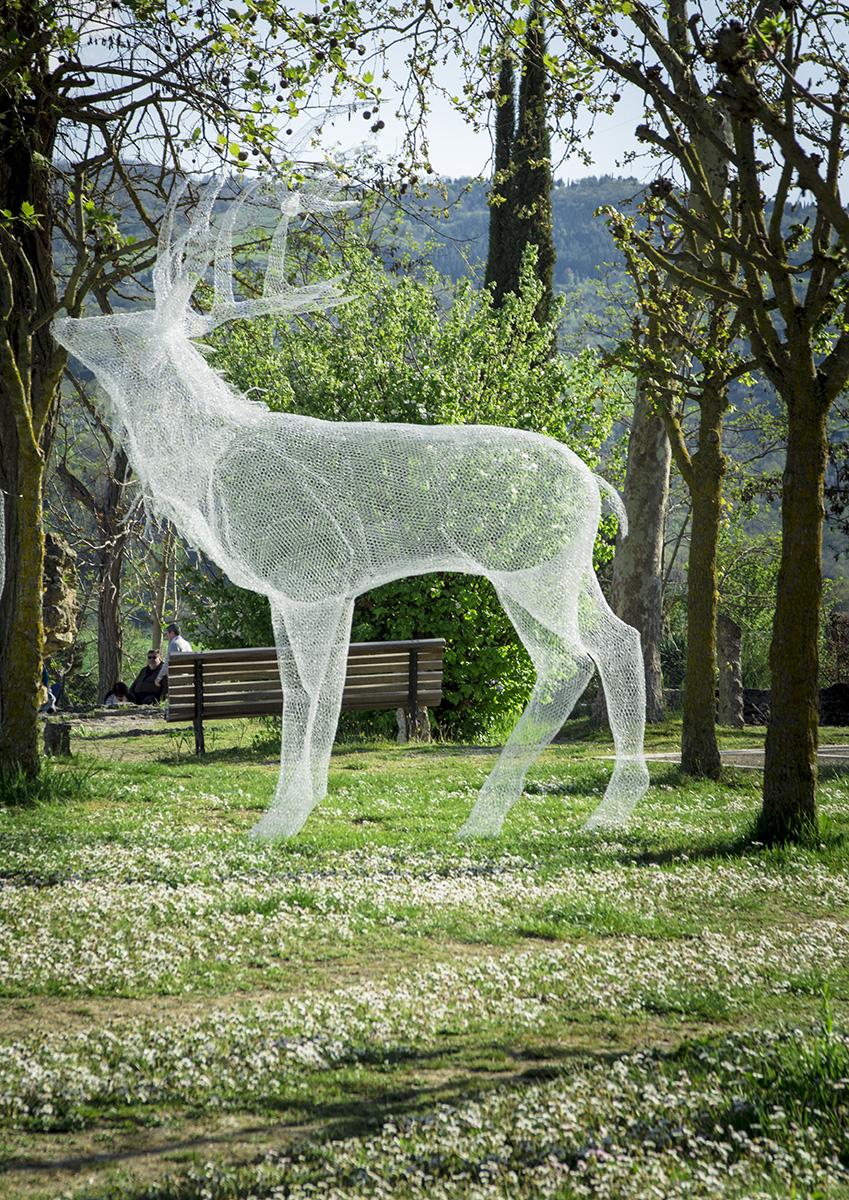Deer in Bagnovignoni