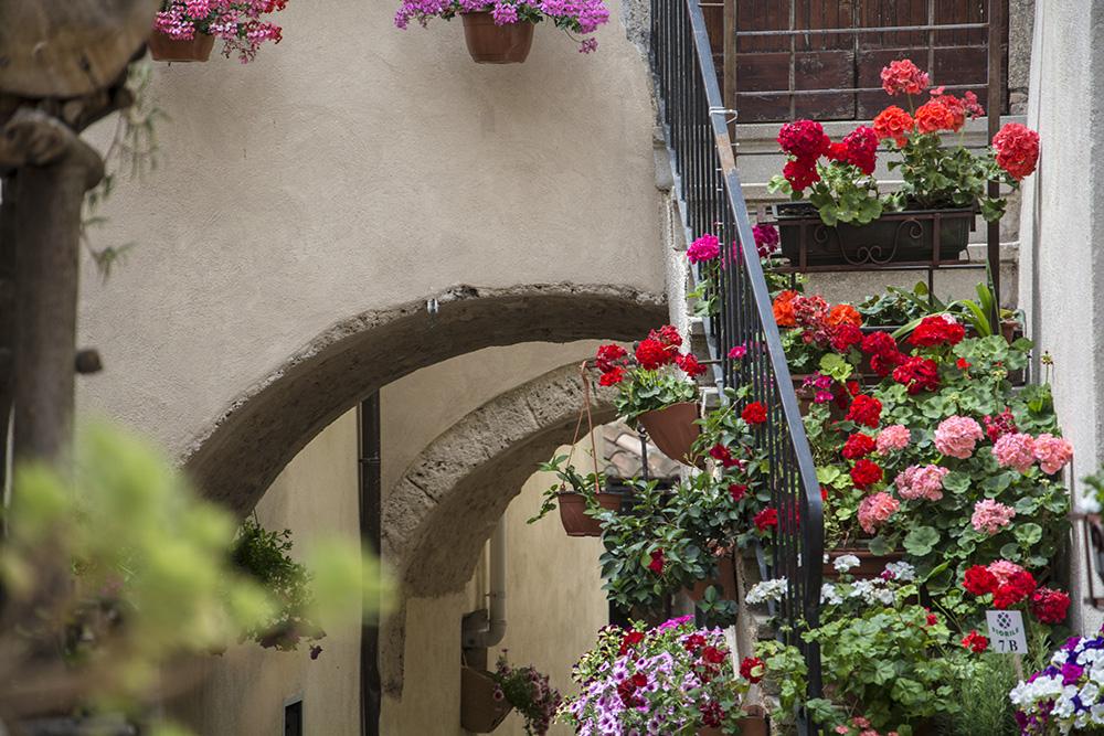Castelnuovo in fiore