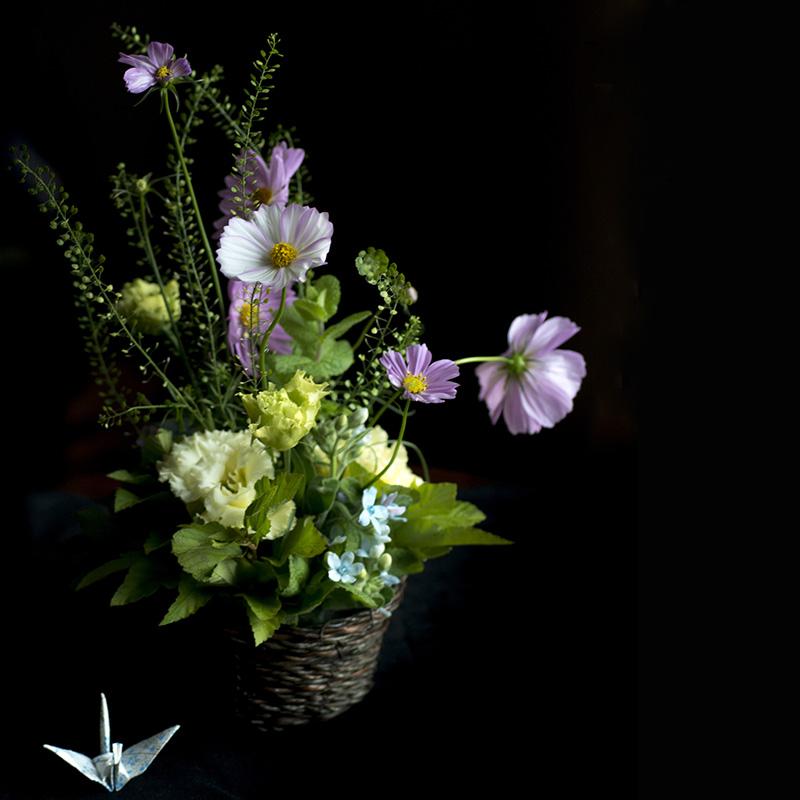 Viaggio Giappone fiori